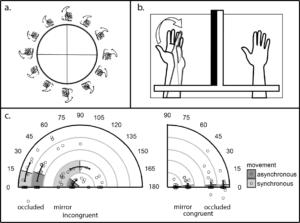 biomechanical_constraints
